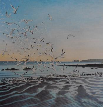 Gulls. Studland Beach