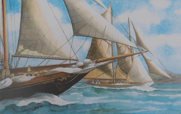 Creole Altair Nioulargue